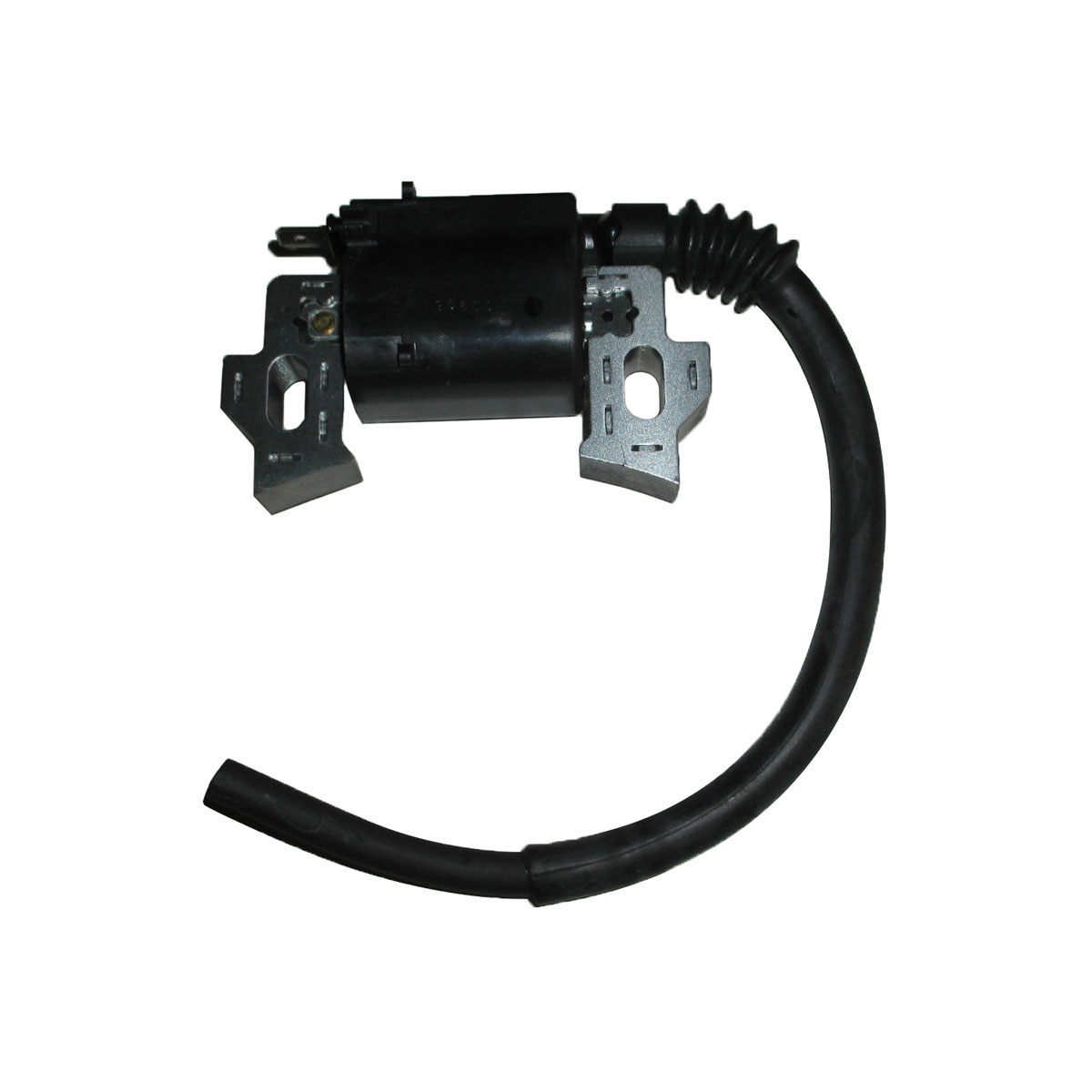 Ignition Coil Assembly 30500-Z0T-802